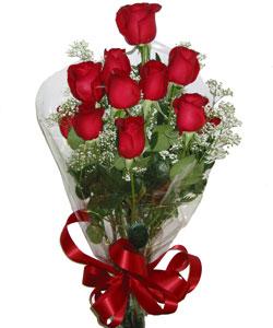 9 adet kaliteli kirmizi gül   Amasya online çiçekçi , çiçek siparişi