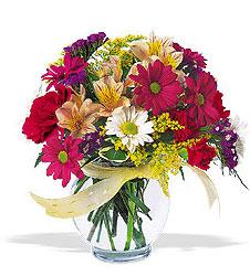 Amasya çiçek , çiçekçi , çiçekçilik  cam yada mika vazo içerisinde karisik kir çiçekleri