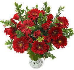 5 adet kirmizi gül 5 adet gerbera aranjmani  Amasya hediye çiçek yolla
