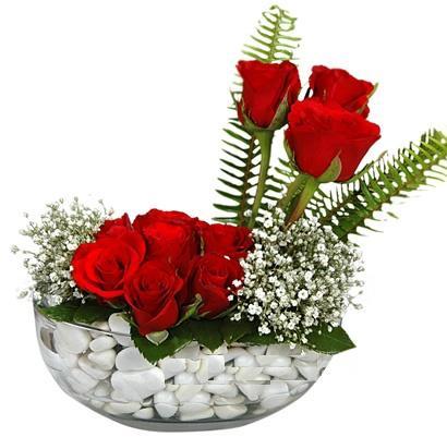 cam içerisinde 9 adet kirmizi gül  Amasya çiçek siparişi vermek