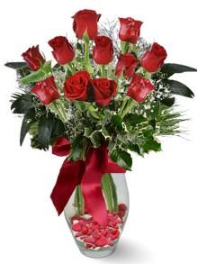 9 adet gül  Amasya internetten çiçek satışı  kirmizi gül