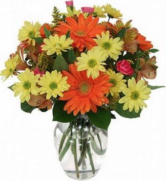 Amasya hediye sevgilime hediye çiçek  vazo içerisinde karışık mevsim çiçekleri