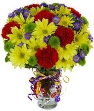 En güzel hediye karışık mevsim çiçeği  Amasya hediye çiçek yolla