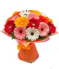 Renkli gerbera buketi  Amasya anneler günü çiçek yolla