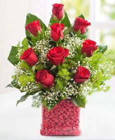 Cam içerisinde 9 adet kırmızı gül  Amasya internetten çiçek satışı