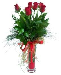 vazo içerisinde 5 kırmızı gül  Amasya güvenli kaliteli hızlı çiçek
