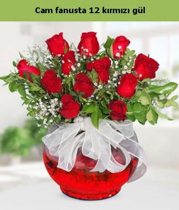 Cam içerisinde 12 adet kırmızı gül  Amasya internetten çiçek satışı