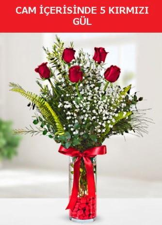 Cam içerisinde 5 adet kırmızı gül  Amasya çiçek siparişi sitesi