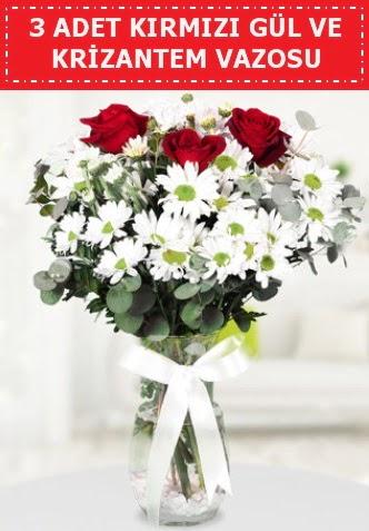 3 kırmızı gül ve camda krizantem çiçekleri  Amasya çiçek gönderme