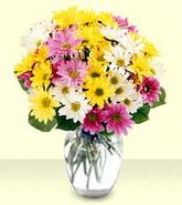 Amasya internetten çiçek siparişi  mevsim çiçekleri mika yada cam vazo