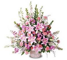 Amasya çiçek siparişi sitesi  Tanzim mevsim çiçeklerinden çiçek modeli