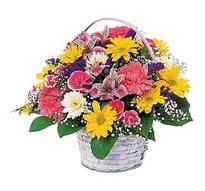 Amasya çiçek , çiçekçi , çiçekçilik  mevsim çiçekleri sepeti özel