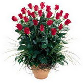 Amasya uluslararası çiçek gönderme  10 adet kirmizi gül cam yada mika vazo