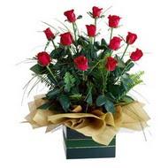 Amasya internetten çiçek satışı  10 adet kirmizi gül özel mika yada cam vazoda