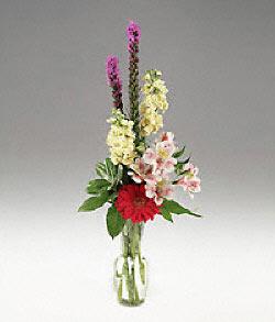 Amasya çiçek siparişi vermek  cam yada mika vazoda mevsim çiçekleri