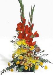 Amasya hediye sevgilime hediye çiçek  glayör ve mevsim çiçekleri