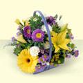 Amasya online çiçekçi , çiçek siparişi  sepette kir çiçeklerinden  Amasya çiçek yolla