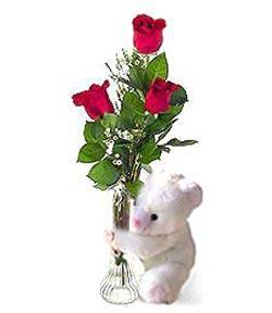 oyuncak ve 3 adet gül  Amasya çiçek siparişi sitesi