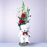 2 adet gül ve panda özel  Amasya çiçekçi mağazası