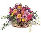 sepette karisik haldeler   Amasya hediye çiçek yolla
