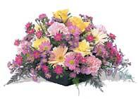 Amasya çiçek gönderme sitemiz güvenlidir  karisik sepet tanzimi bahar