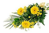 sari gerbera ve sari çiçek   Amasya İnternetten çiçek siparişi