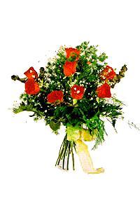 9 adet seçme kirmizi gül   Amasya çiçek gönderme sitemiz güvenlidir