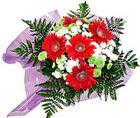 karisik gerbera ve kir çiçegi   Amasya çiçekçi telefonları