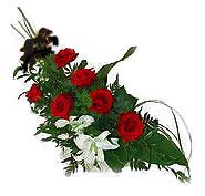 7 adet gül ve kazablanka   Amasya ucuz çiçek gönder