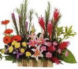 çok özel aranjman tanzimi   Amasya çiçek gönderme sitemiz güvenlidir