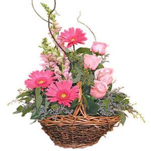küçük ama görsel aranjman   Amasya çiçek gönderme sitemiz güvenlidir