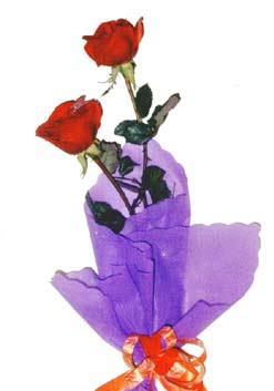 2  adet kirmizi gül buketi   Amasya çiçek , çiçekçi , çiçekçilik