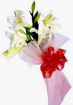 Amasya çiçek , çiçekçi , çiçekçilik  3 adet kazablanka buketi