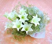 lilyum demeti 3 adet lilyum  Amasya kaliteli taze ve ucuz çiçekler