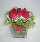 6 adet kirmizi gül camdadir   Amasya çiçek yolla