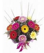 karisik gerbera çiçekleri  Amasya çiçek yolla