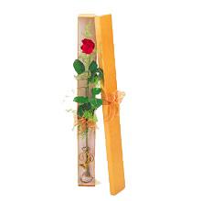 ince  kutuda  1  gül   Amasya çiçek yolla