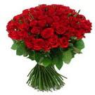 101 adet kirmizi gül sade  Amasya çiçek yolla