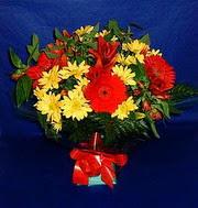 karisik halde mevsimsel  Amasya çiçek yolla