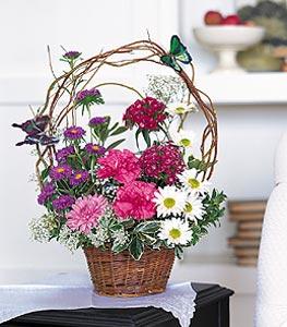 Amasya cicekciler , cicek siparisi  sepet içerisinde karanfil gerbera ve kir çiçekleri
