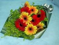 tül içerisinde gerbera çiçekleri 11 adet  Amasya cicek , cicekci
