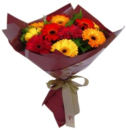 Amasya internetten çiçek satışı  13 ADET KARISIK GERBERA BUKETI