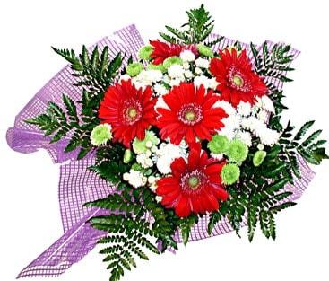 gerbera ve krizantem demeti  Amasya çiçekçi mağazası