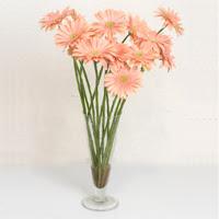 Amasya çiçek siparişi sitesi  ince cam vazoda 15 adet gerbera çiçegi