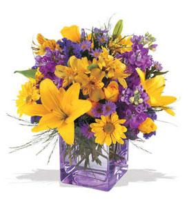 Amasya çiçek mağazası , çiçekçi adresleri  cam içerisinde kir çiçekleri demeti