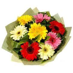 9 adet karisik gerbera demeti  Amasya çiçek mağazası , çiçekçi adresleri
