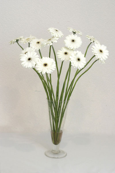 Amasya çiçek mağazası , çiçekçi adresleri  cam vazo içerisinde 17 adet sade gerbera
