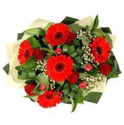 Amasya ucuz çiçek gönder   5 adet kirmizi gül 5 adet gerbera demeti