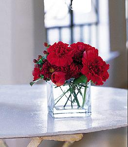 Amasya ucuz çiçek gönder  kirmizinin sihri cam içinde görsel sade çiçekler
