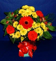 Amasya ucuz çiçek gönder  sade hos orta boy karisik demet çiçek